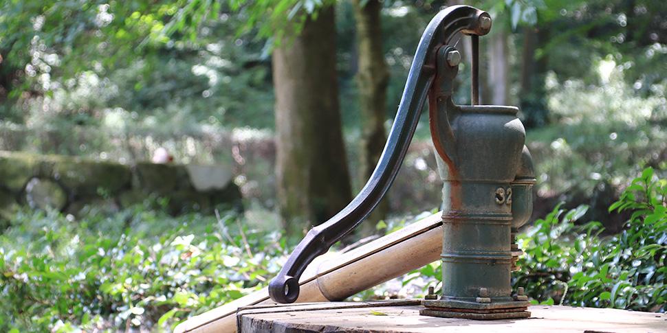 井戸水の水質によっては植物の成長促進効果も