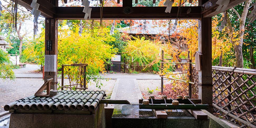 日本の名水を楽しもう!水質の高い井戸4選